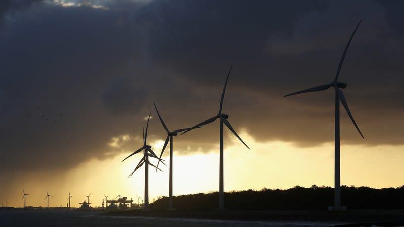 Wind mills along the Rotterdam port.