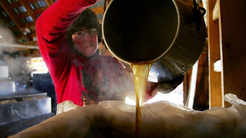 "Illustration for article titled Maple syrup makers are salty over FDA's ""sugar added"" labels"