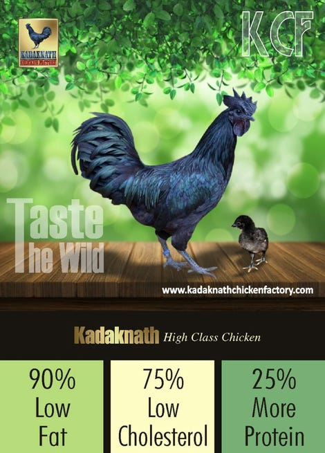 Illustration for article titled Buy Fresh Kadaknath Chicken Meat Online At Lowest Prices