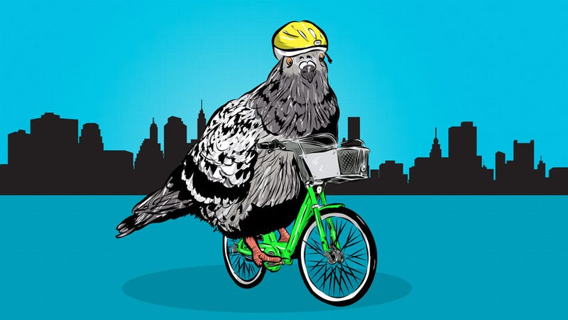 Illustration for article titled How To Ride A Bike In The City