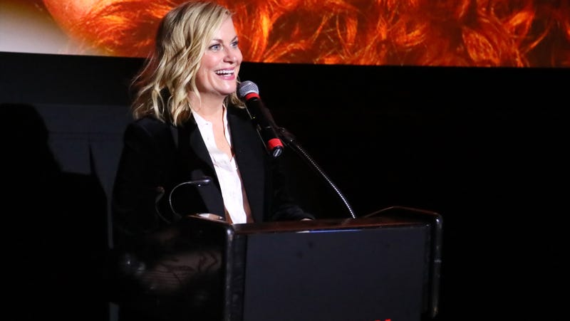 Illustration for article titled Amy Poehler is bringing back the Riot Grrrl spirit with her next directorial gig for Netflix, Moxie