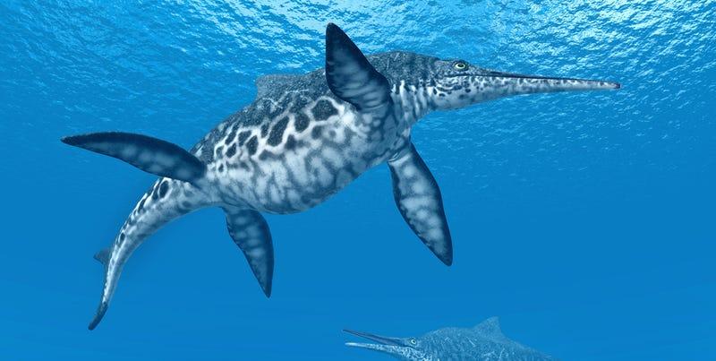 Illustration for article titled Descubren el primer fósil de un ictiosaurio anfibio en China