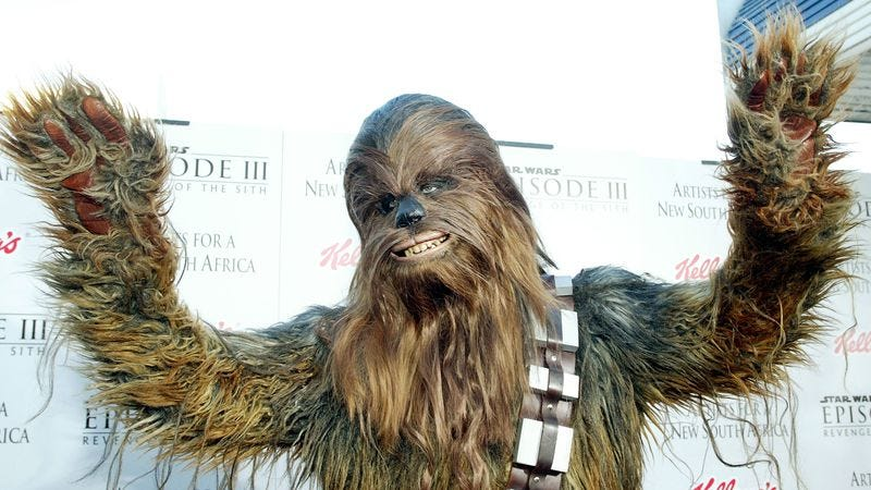 Chewbacca in the full bloom of adulthood, which has a different kind of allure (Photo: Frederick M. Brown/Getty)