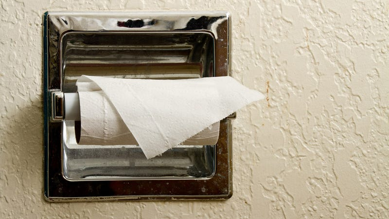 Toilet Paper: A Brief and Sometimes Painful History
