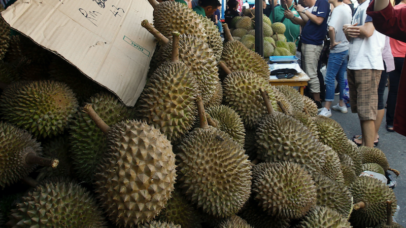 The International Durian Cultural Tourism Festival in Bentong, Malaysia.