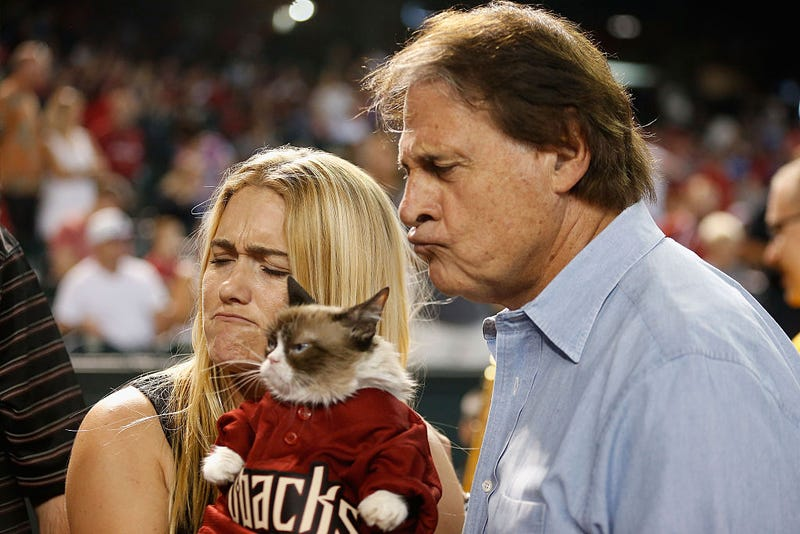 Illustration for article titled Tony La Russa Says Farewell To His Dear Friend Grumpy Cat