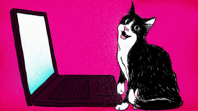 Teach Your Cat To Use Skype With This Pet Friendly Guide