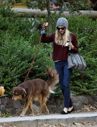 Illustration for article titled Amanda Seyfried's Dior & Dog