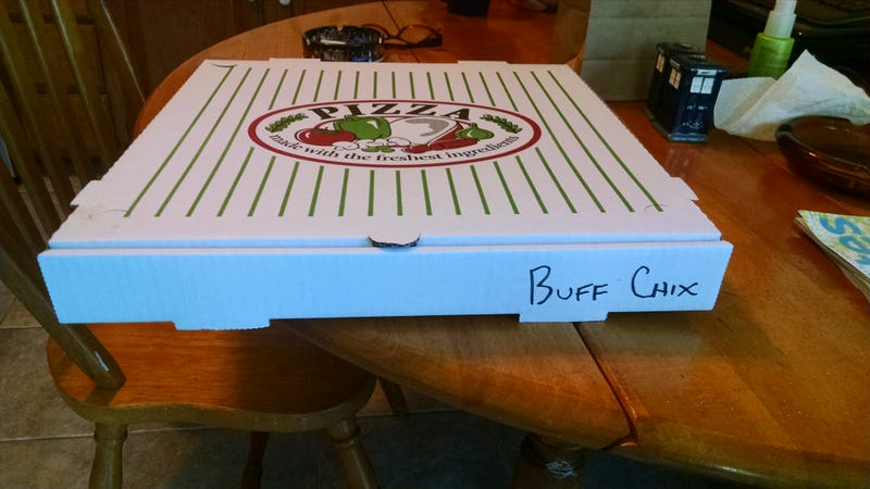 Illustration for article titled I like how they labeled my pizza...