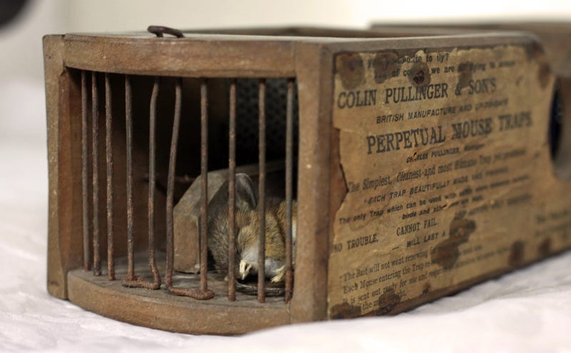 Illustration for article titled A Museum's 155-Year-Old Antique Mouse Trap Is Still Catching Rodents