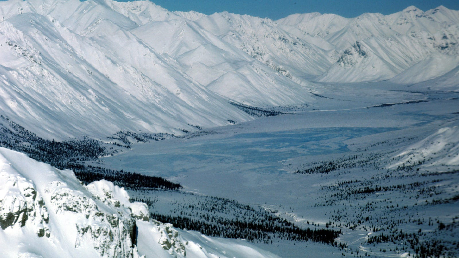 Investors Worth $2.5 Trillion Don't Want Drilling in the Arctic National Wildlife Refuge
