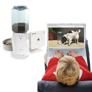 Illustration for article titled Remote Pet Feeder: Dish Out the Food and Watch Precious Eat From Around the Globe