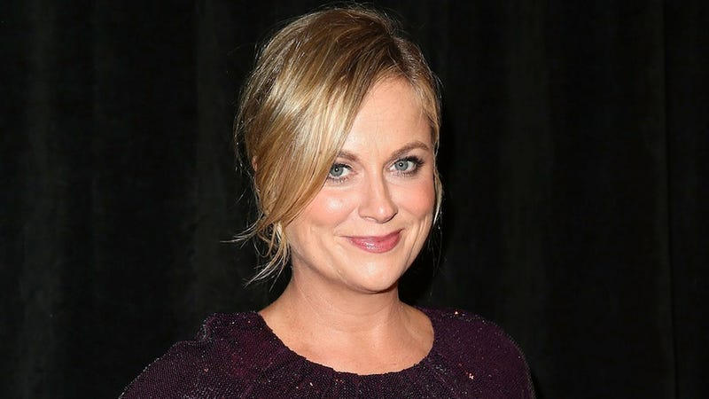Illustration for article titled Amy Poehler Has Been Crowned Hasty Pudding's Woman of the Year