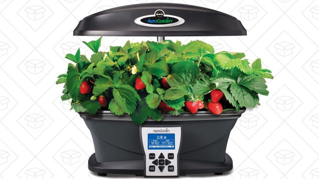 Anyone Can Grow Their Own Food With This Discounted Miracle-Gro AeroGarden