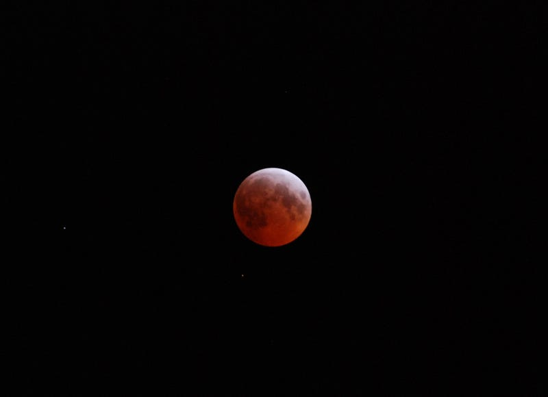 Illustration for article titled Shooting Challenge: Super Lunar Eclipse