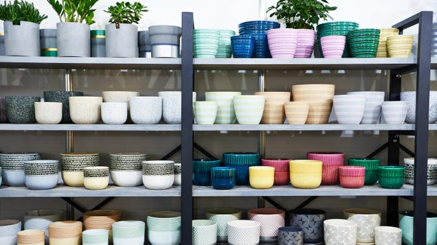 The Difference Between Terracotta, Ceramic, and Plastic Pots, and Why It Matters to Your Plants
