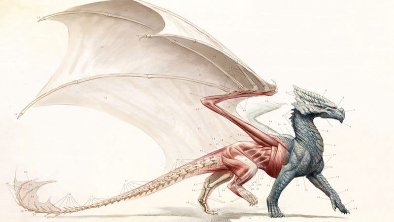 Illustration for article titled Don't miss this engrossing novel about the science of dragons