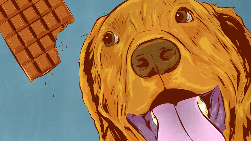 Illustration for article titled The Foods That Are Most Dangerous to Dogs, and Why