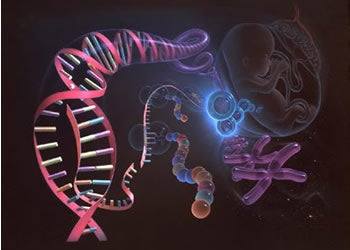 Illustration for article titled Tinkercell Takes The Mess Out've Genetic Tinkering