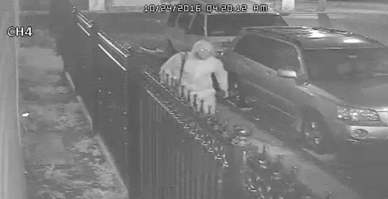 Suspect in attack in the Bronx, N.Y.Screenshot from police surveillance video