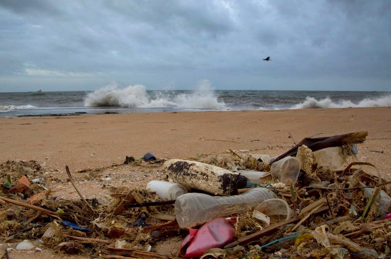 Plastic waste lies among other debris washed ashore on a beach in Sri Lanka. Gemunu Amarasinghe/AP