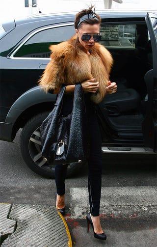Illustration for article titled Posh: Fur Or Fake?
