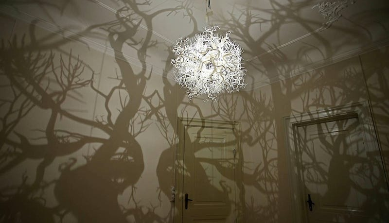 Illustration for article titled Chandelier casts a fantasy forest of shadows against the walls