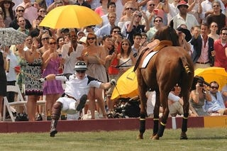 Illustration for article titled Prince Harry Falls Off Polo Pony, Hurts Royal Arse