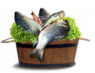 Illustration for article titled Switch To Healthy Eating With Fresh Fish And Chicken Online