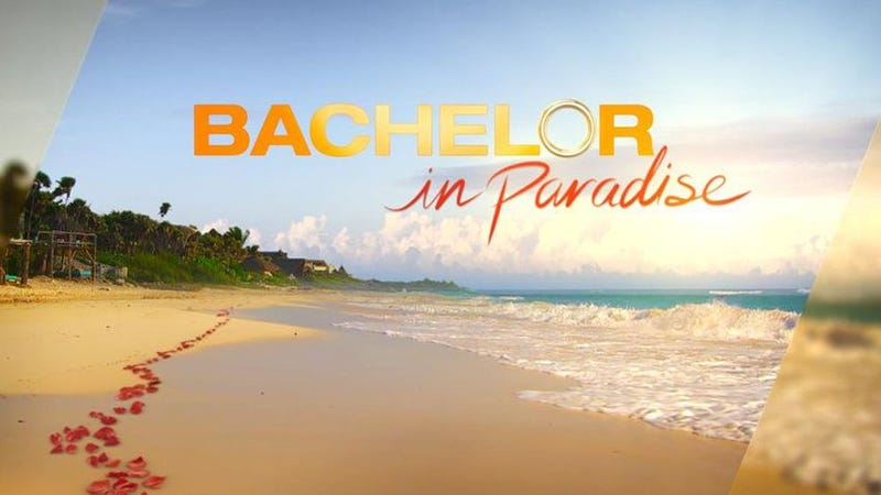 'Bachelor in Paradise' suspended over allegations of misconduct on set