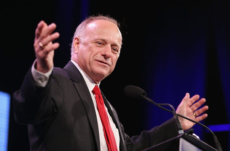 Rep. Steve King (R-Iowa) speaks to guests  at the Iowa Freedom Summit on Jan. 24, 2015, in Des Moines, Iowa.Scott Olson/Getty Images