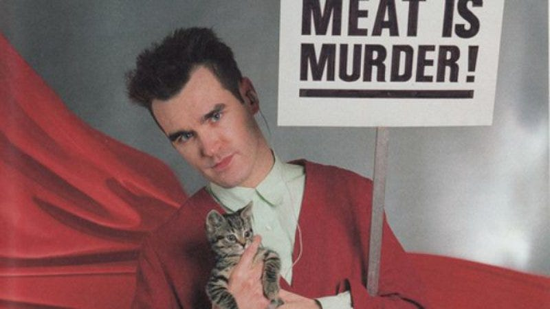 Illustration for article titled You're the one for me, kitty: The Morrissey With Cats Tumblr