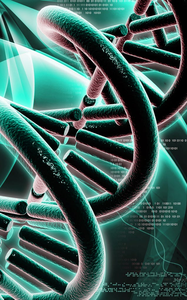 WHAT dEVELOPMENTS IN DNA HAVE BEEN MADE IN THE PAST 10-20 YEARS?