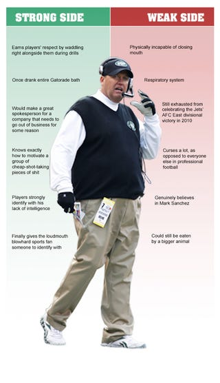 Illustration for article titled Rex Ryan