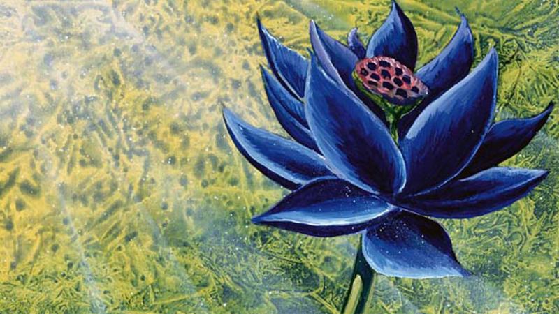 Carte Magic Black Lotus Prix.Rare Alpha Black Lotus Sells For 87 000