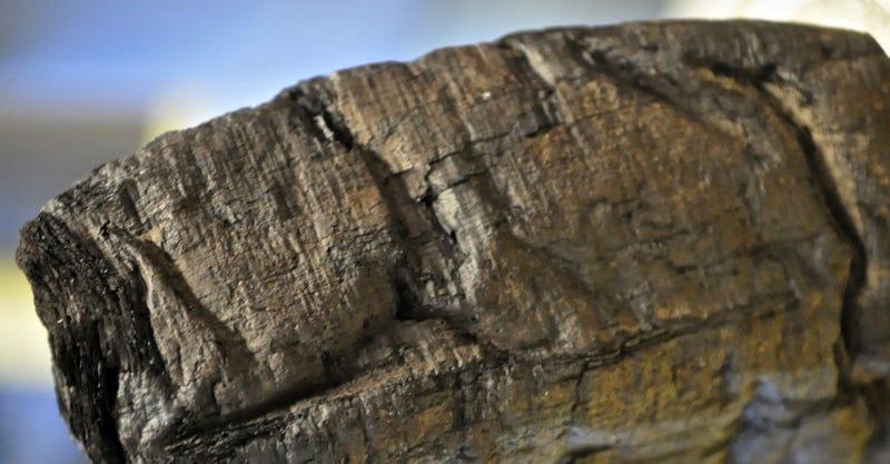 Logran leer papiros calcinados por el volcán Vesubio hace 2.000 años