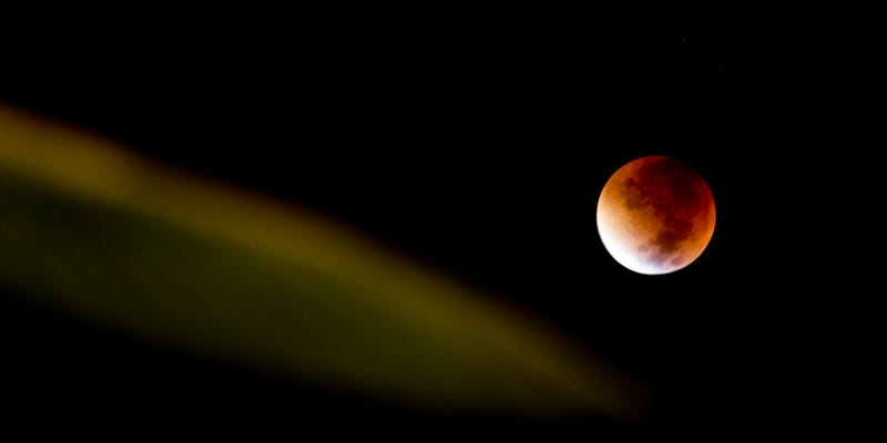 Illustration for article titled Here Are the Best Images of Last Night's Supermoon Eclipse