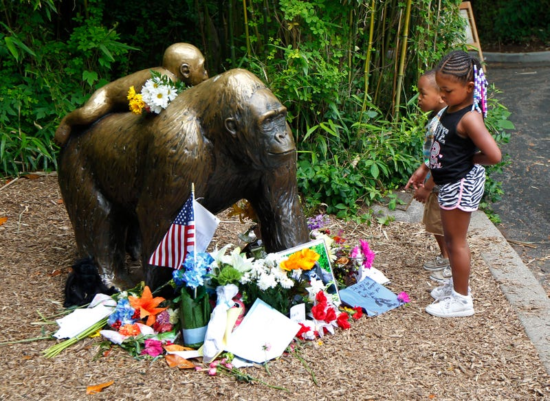 Young visitors view a bronze statue of a gorilla and its baby surrounded by flowers outside the Cincinnati Zoo's Gorilla World exhibit June 2, 2016, days after a 3-year-old boy fell into the habitat and officials were forced to kill Harambe, a 17-year-old silverback gorilla.John Sommers II/Getty Images