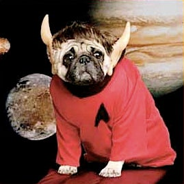 Illustration for article titled Star Trek Creator's Widow Left $4 Million To Her Dogs