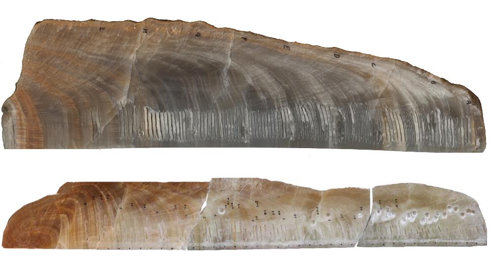 isotopes radiocarbon radiocarbon-dating stalagmites