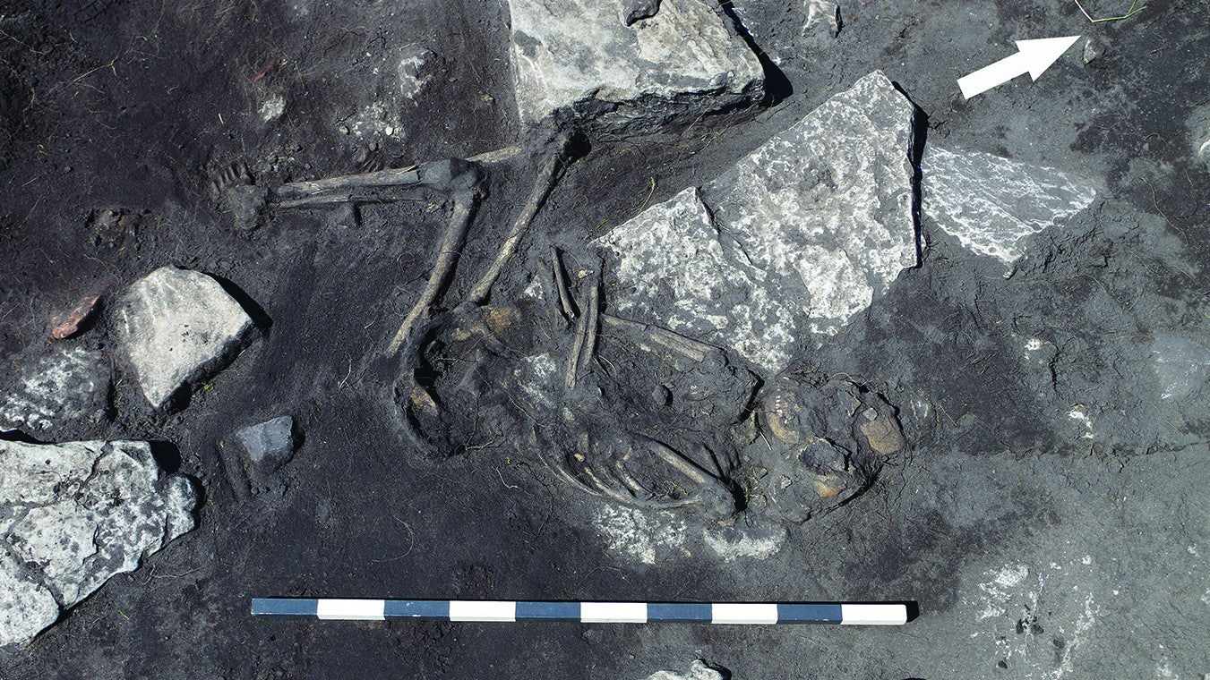 anthropology archaeology history massacres medieval-sweden