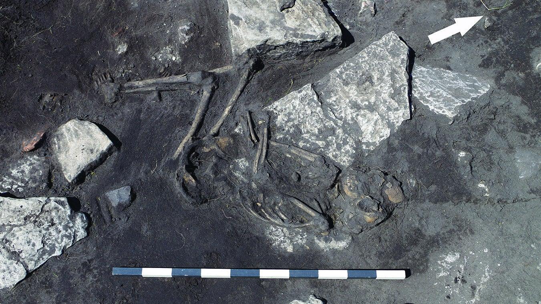 anthropology archaeology history massacres medieval-sweden
