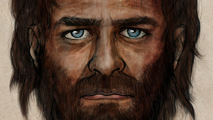 First European Hunter-Gatherer Genome Reveals Blue Eyes Evolved Early