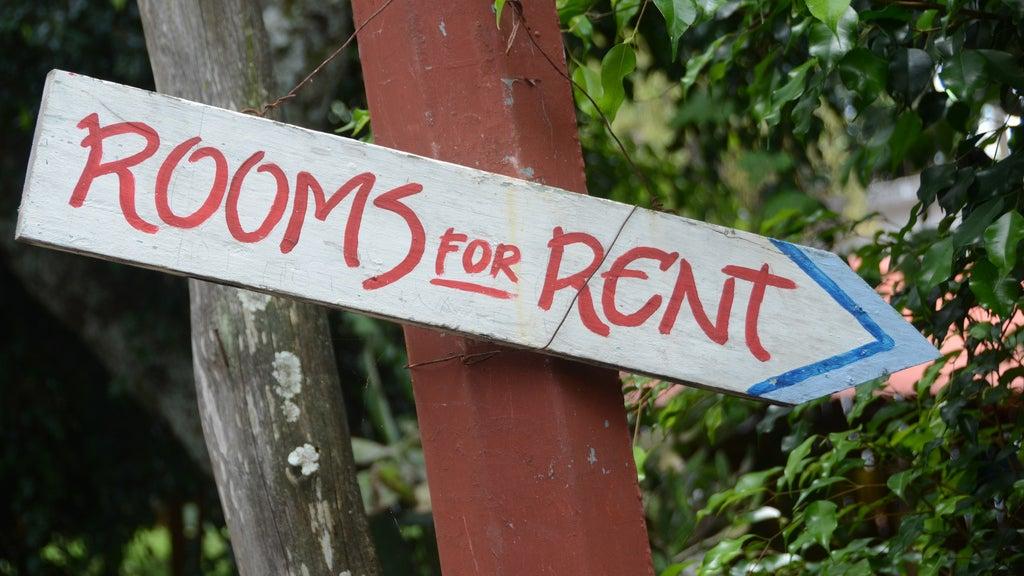 landlord renting