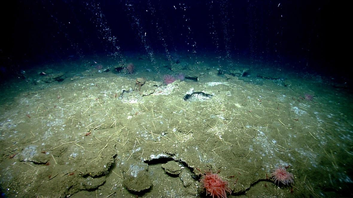 deep-ocean-exploration environment ev-nautilus geosciences methane methane-seeps