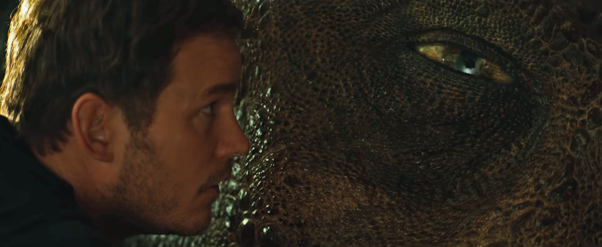 In The New Jurassic World: Fallen Kingdom Trailer, It's The Dinosaurs' World, And We're Just Living In It
