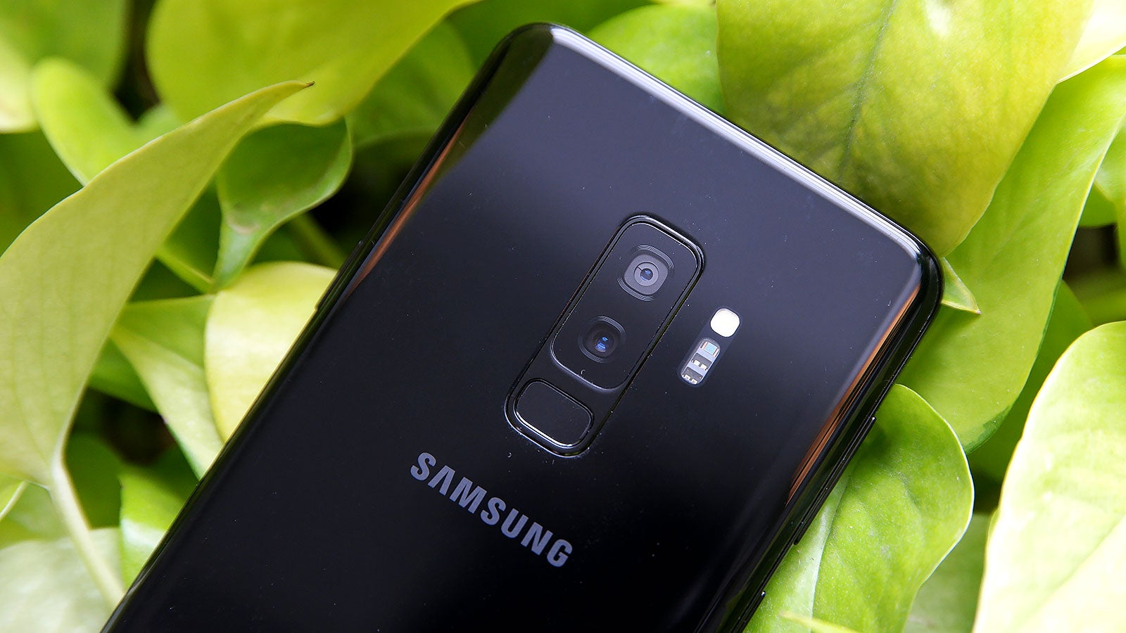The Samsung Galaxy S10 Will Have All The Cameras