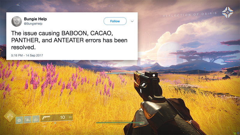 Destiny Error Code Names, Ranked