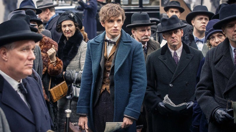 Newt Scamander Is The Biggest Idiot In All Of Harry Potter History