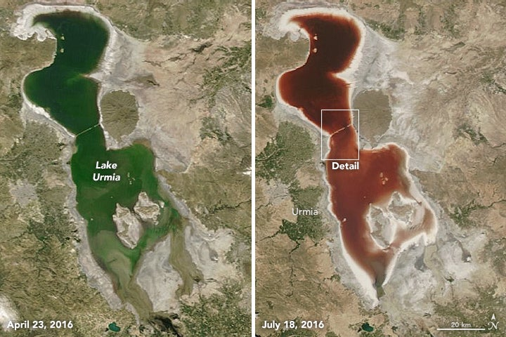 algae lakes nasa